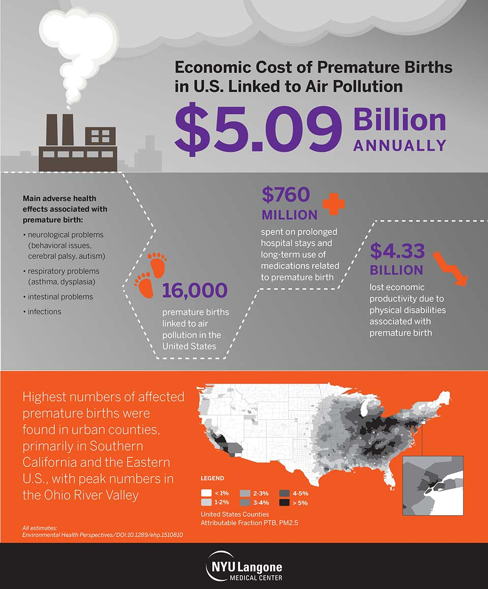 Economic Cost of Premature Births Infographic