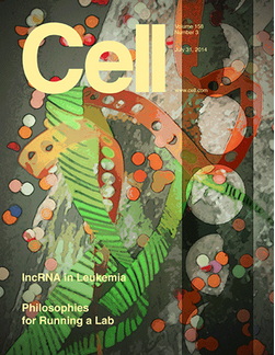 Cell Cover Issue July 31, 2014