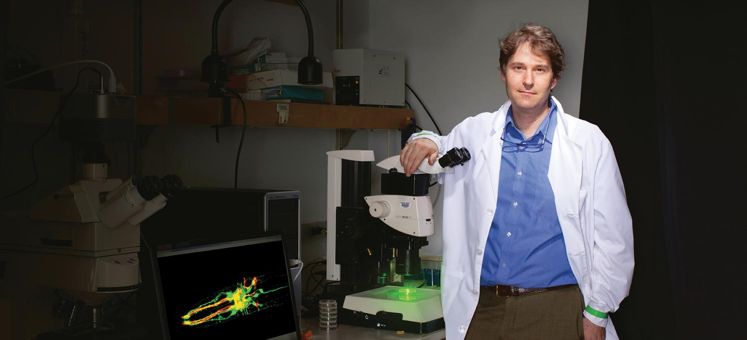 Dr. Niels Ringstad Uses Fluorescence Microscopy
