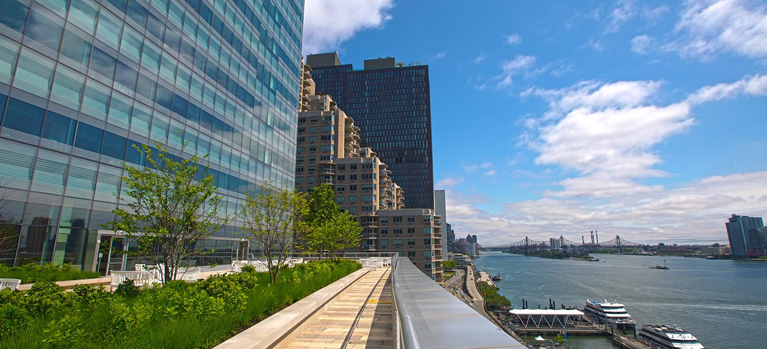 NYU Langone Medical Center and the East River