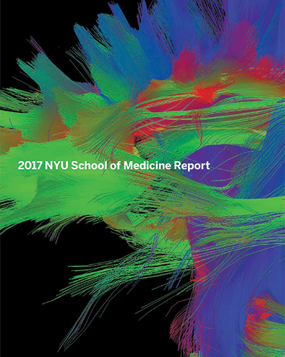 School of Medicine 2017 Report